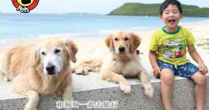 HyRead ebook 電子書-和狗狗一起去旅行:友善寵物親子民宿101